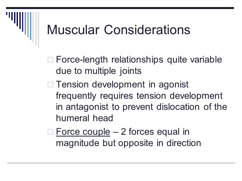 Muscular Considerations