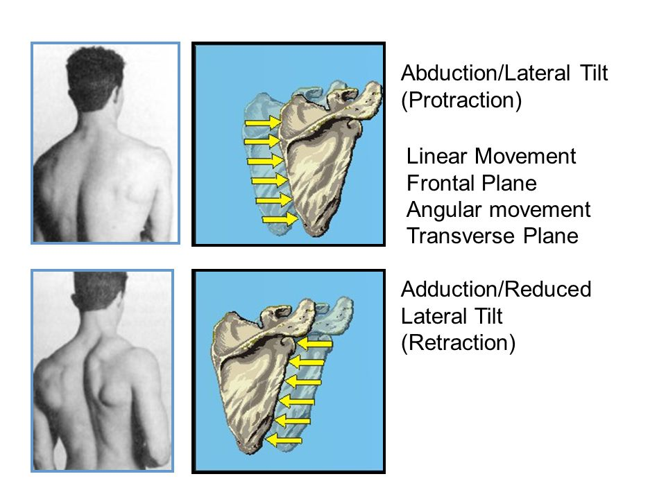 Abduction/Lateral Tilt (Protraction)