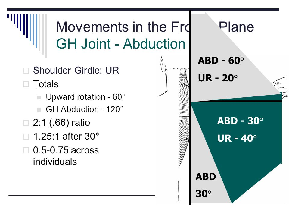 Movements in the Frontal Plane GH Joint - Abduction