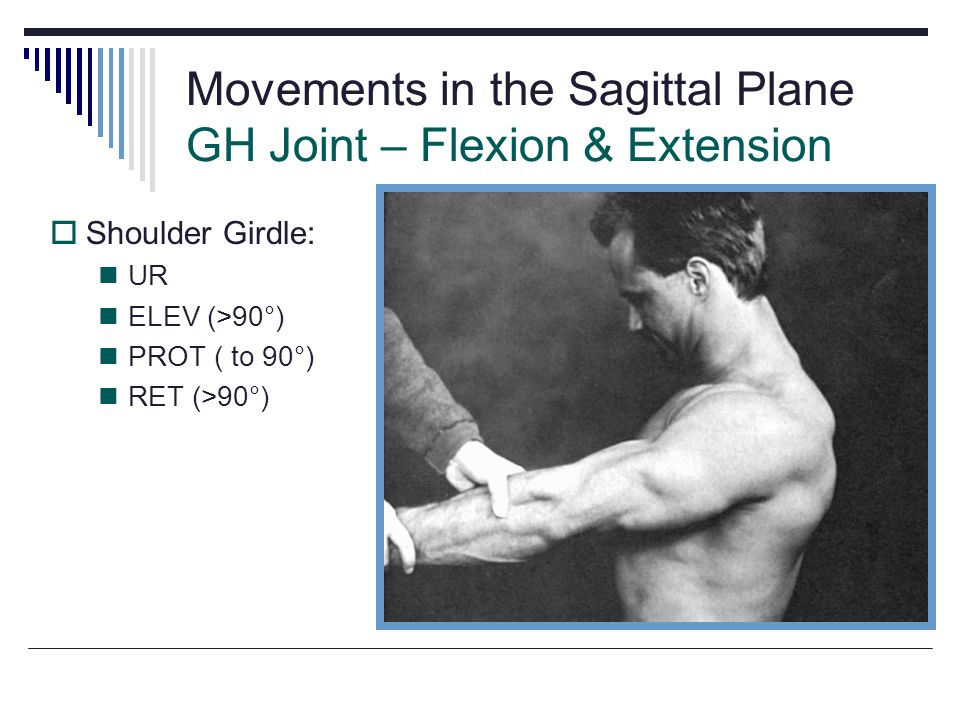 Movements in the Sagittal Plane GH Joint – Flexion & Extension