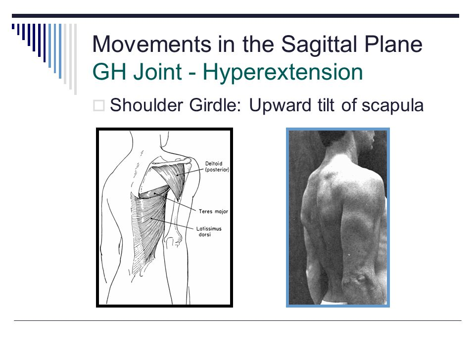 Movements in the Sagittal Plane GH Joint - Hyperextension