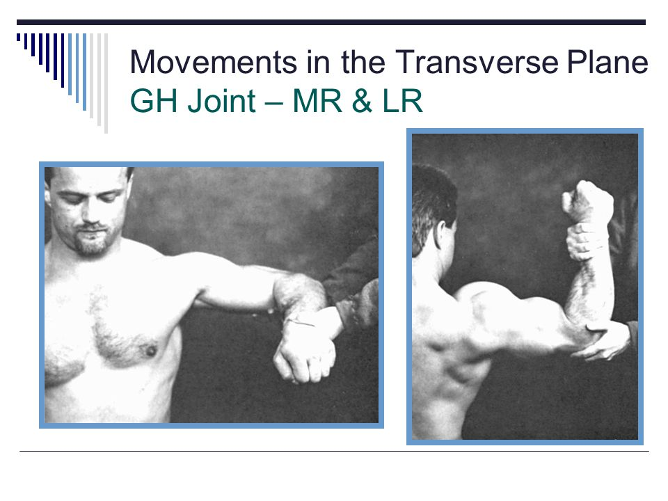 Movements in the Transverse Plane GH Joint – MR & LR