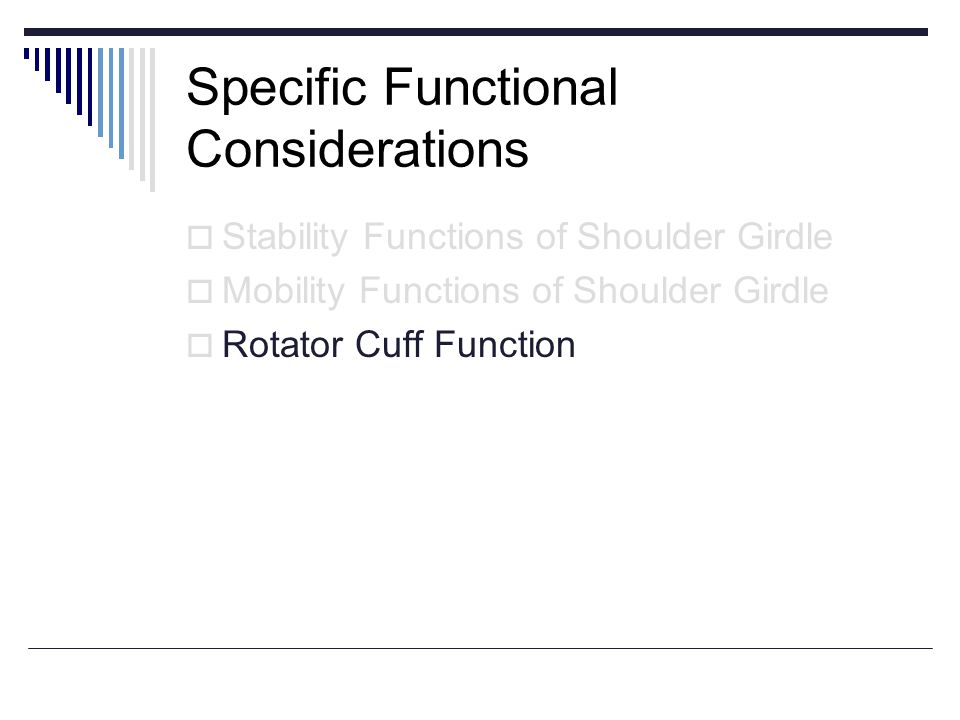 Specific Functional Considerations
