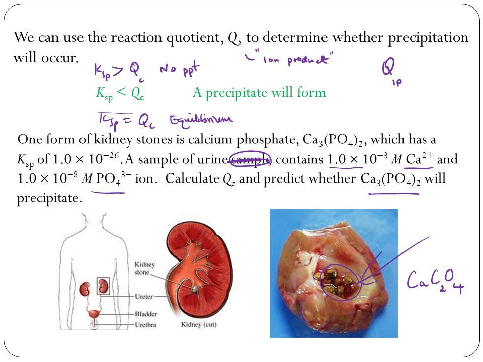 Solubility and Complex-Ion Equilibria - ppt download
