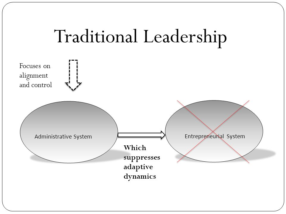 Traditional Leadership