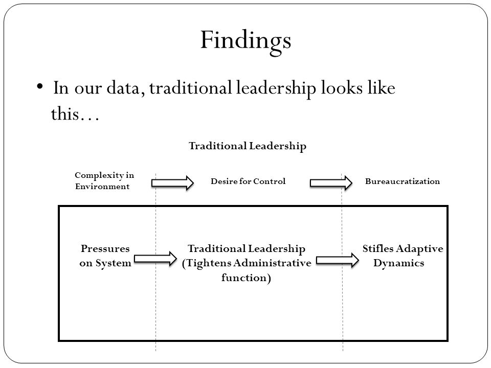 Traditional Leadership Complexity in Environment