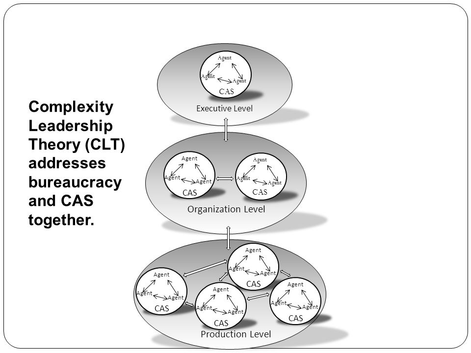 Agent CAS. Complexity Leadership Theory (CLT) addresses bureaucracy and CAS together. Executive Level.
