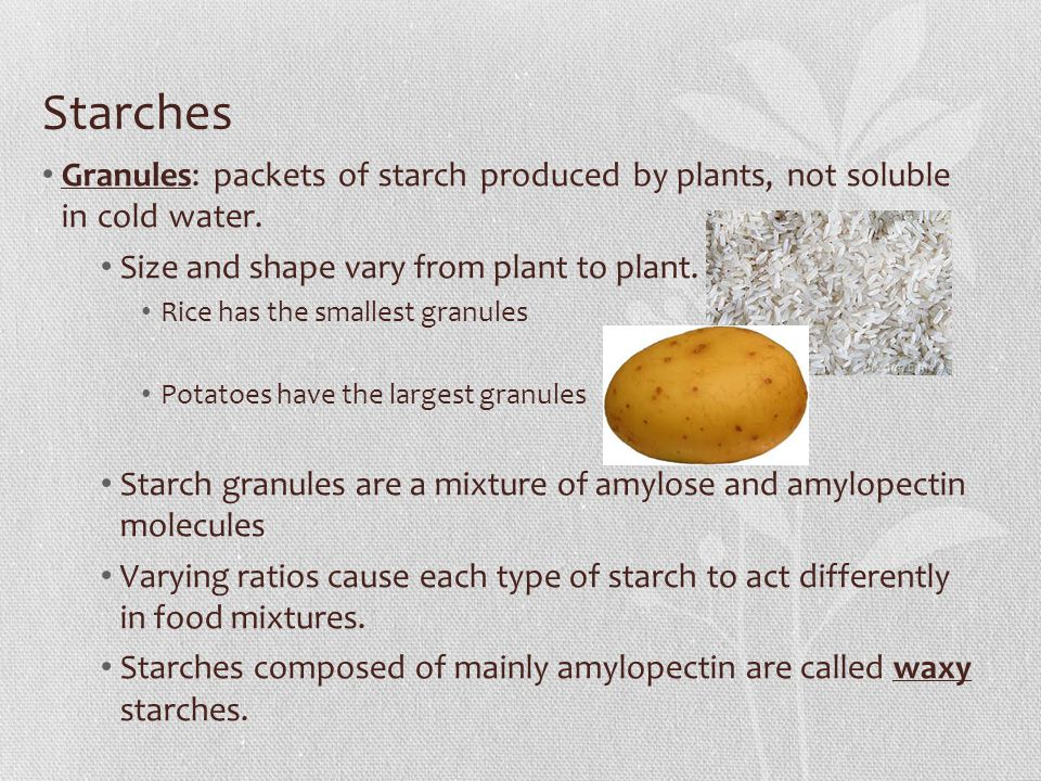 Starches Granules: packets of starch produced by plants, not soluble in cold water. Size and shape vary from plant to plant.
