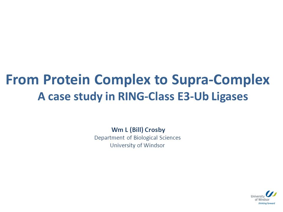From Protein Complex to Supra-Complex A case study in RING-Class E3-Ub Ligases
