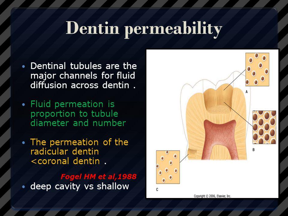 Dentin permeability Dentinal tubules are the major channels for fluid diffusion across dentin .