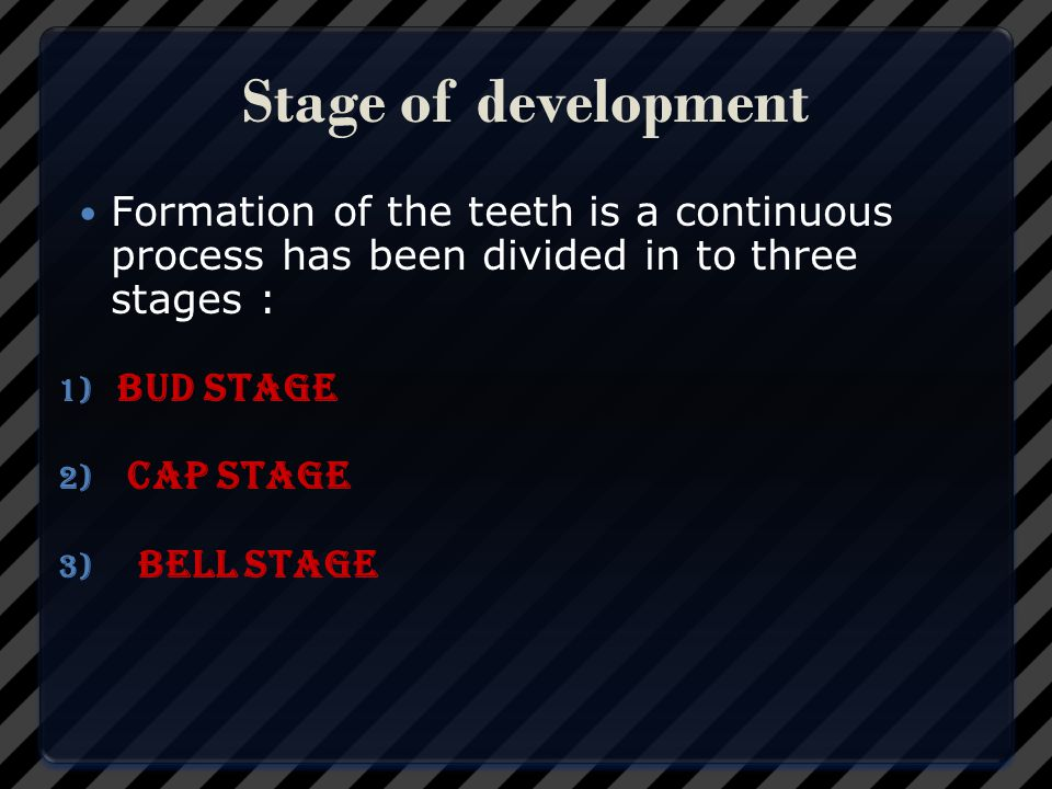 Stage of development Formation of the teeth is a continuous process has been divided in to three stages :