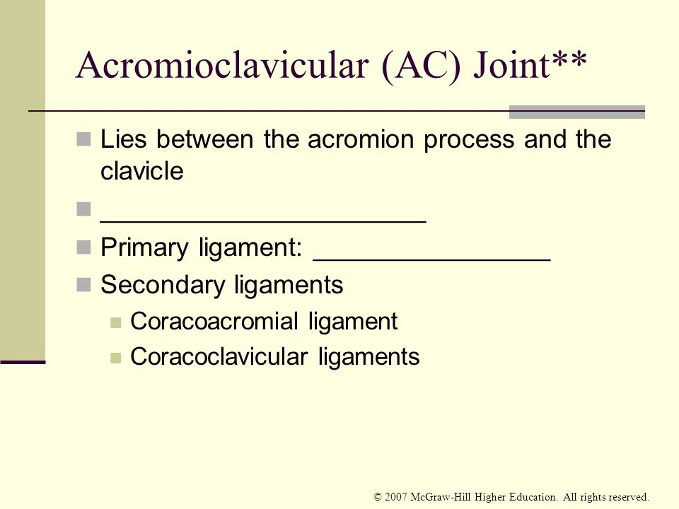 Acromioclavicular (AC) Joint**