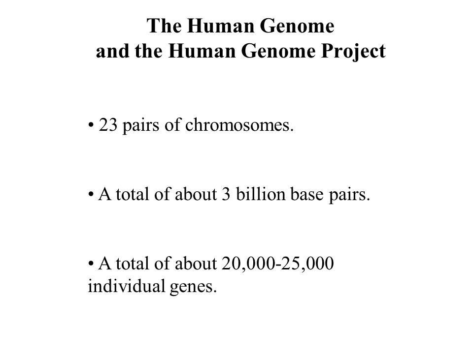 and the Human Genome Project