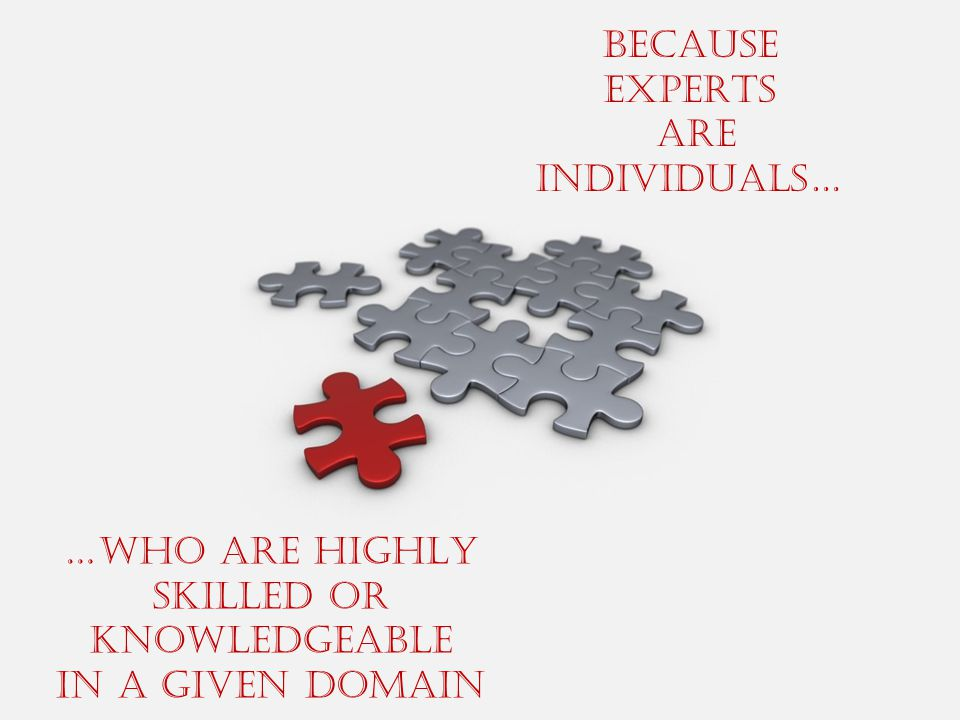 BECAUSE EXPERTS ARE INDIVIDUALS… …WHO ARE HIGHLY SKILLED OR KNOWLEDGEABLE IN A GIVEN DOMAIN