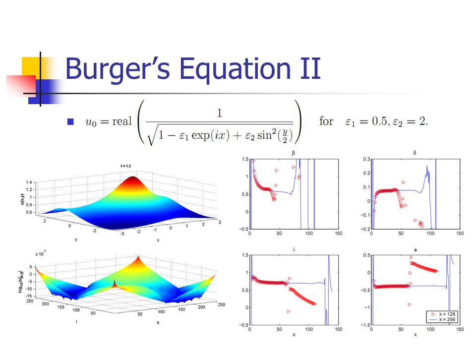 Burger's Equation II WHY WE CHOSE THIS INITIAL COND. WHAT'S SPECIAL ABOUT IT
