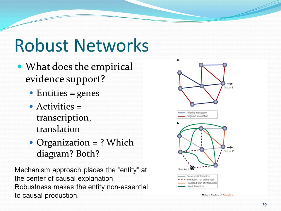 Robust Networks What does the empirical evidence support