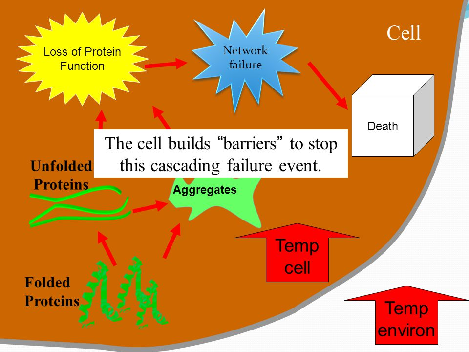 The cell builds barriers to stop this cascading failure event.