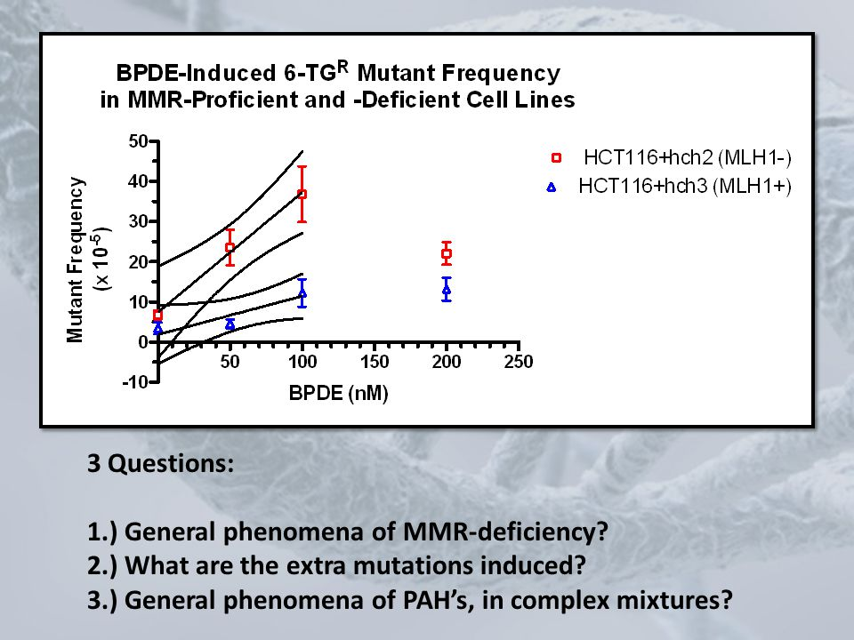 3 Questions: 1.) General phenomena of MMR-deficiency 2.) What are the extra mutations induced