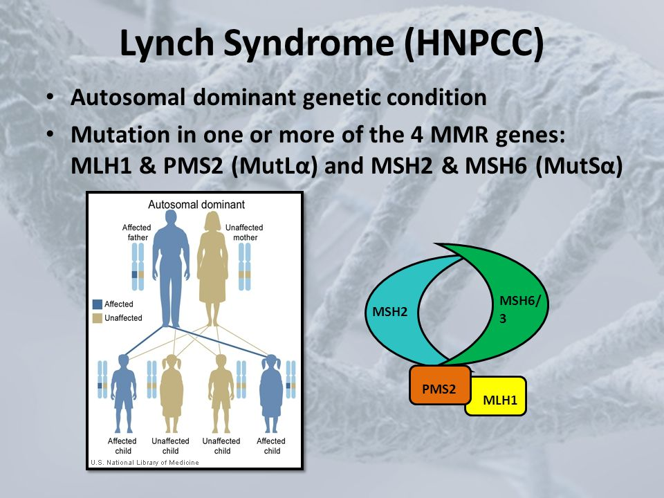 Lynch Syndrome (HNPCC)