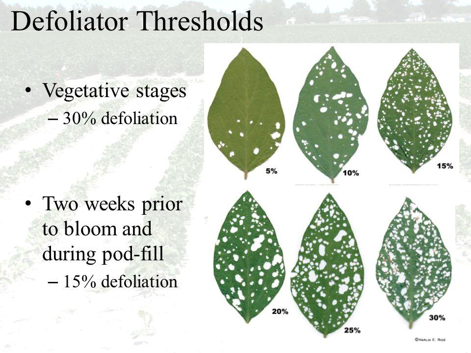 Defoliator Thresholds