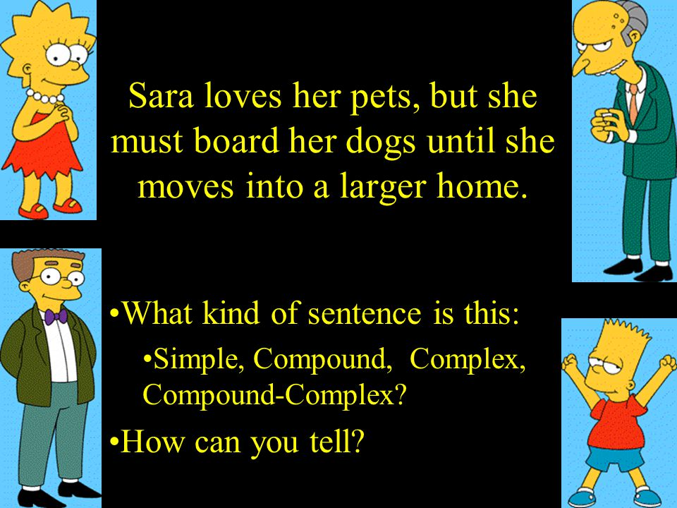 Sara loves her pets, but she must board her dogs until she moves into a larger home.