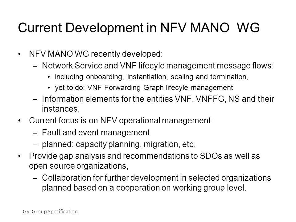 Current Development in NFV MANO WG