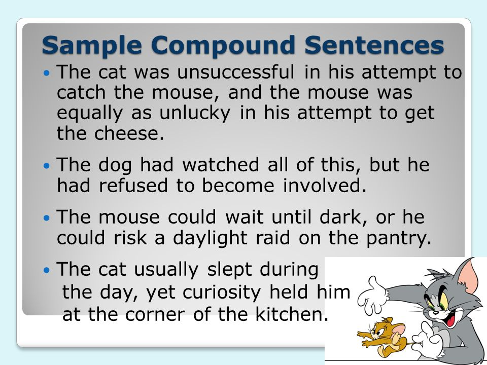Sample Compound Sentences