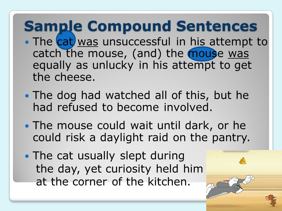 Sample Compound Sentences