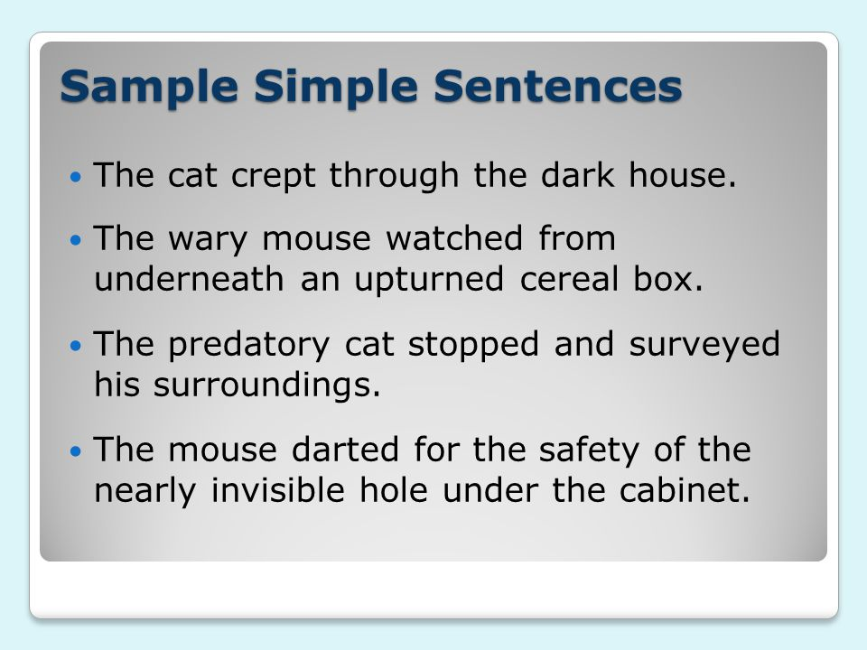 Sample Simple Sentences