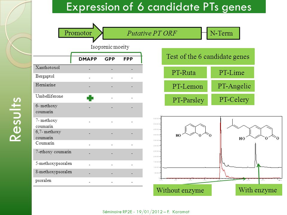Results Expression of 6 candidate PTs genes Promotor Putative PT ORF