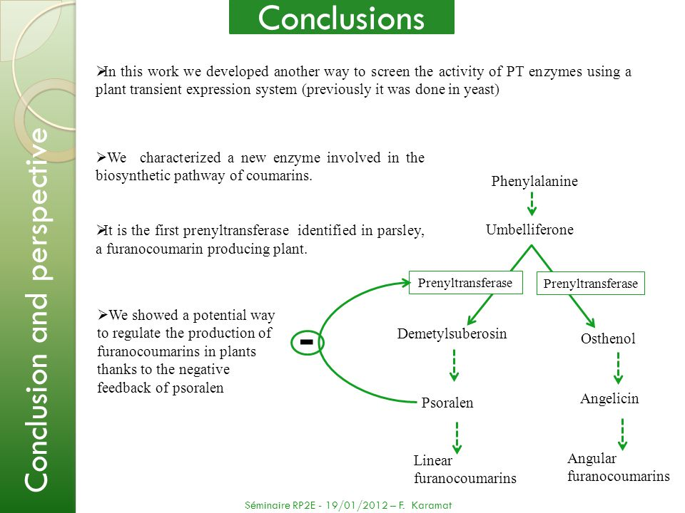 - Conclusions Conclusion and perspective