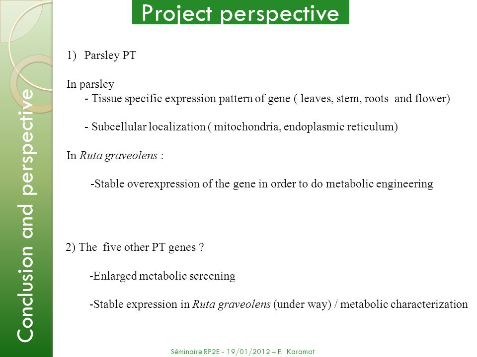 Project perspective Conclusion and perspective Parsley PT In parsley