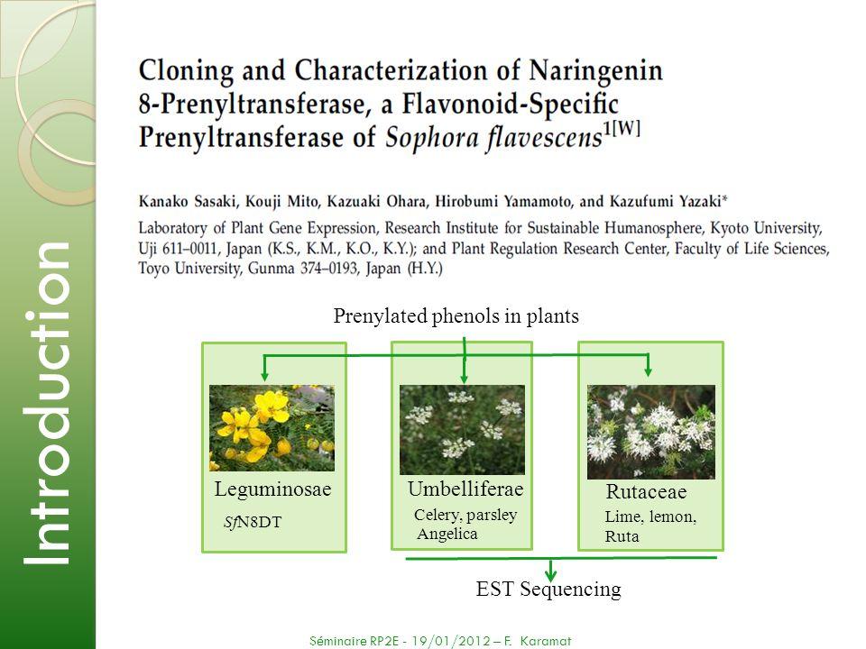 Introduction Prenylated phenols in plants Leguminosae Umbelliferae