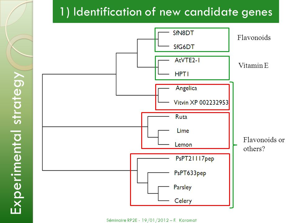 1) Identification of new candidate genes