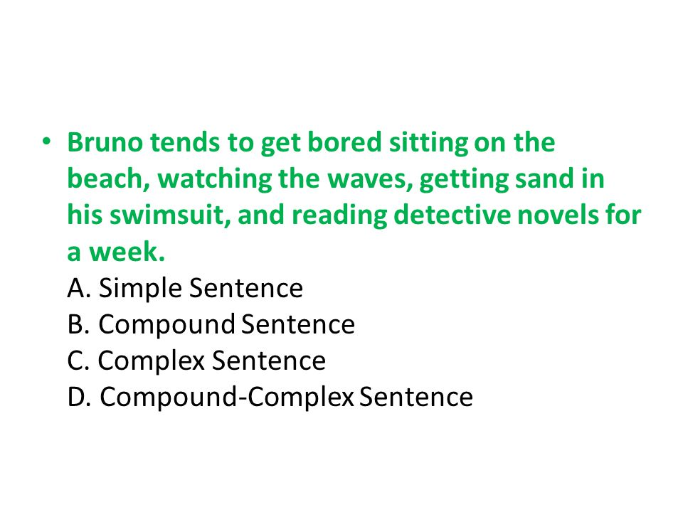 Bruno tends to get bored sitting on the beach, watching the waves, getting sand in his swimsuit, and reading detective novels for a week.