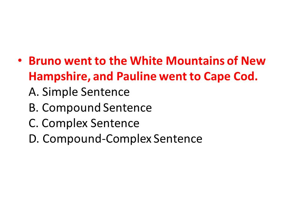 Bruno went to the White Mountains of New Hampshire, and Pauline went to Cape Cod.