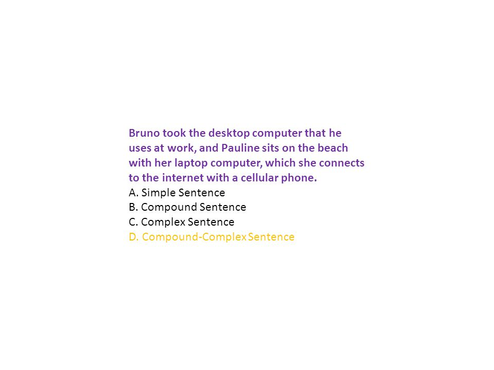 Bruno took the desktop computer that he uses at work, and Pauline sits on the beach with her laptop computer, which she connects to the internet with a cellular phone.
