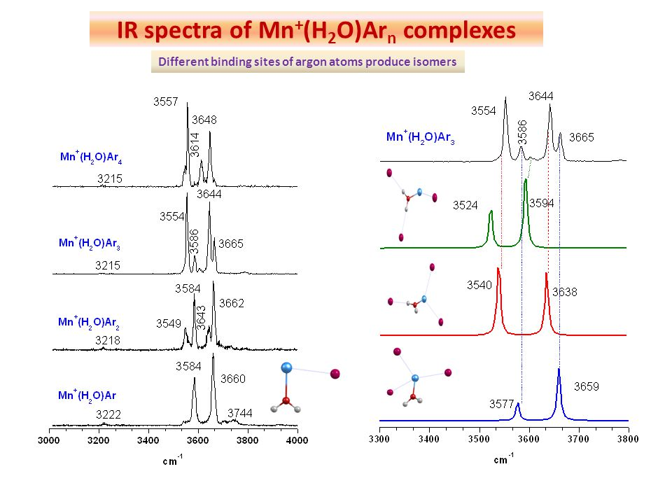 IR spectra of Mn+(H2O)Arn complexes