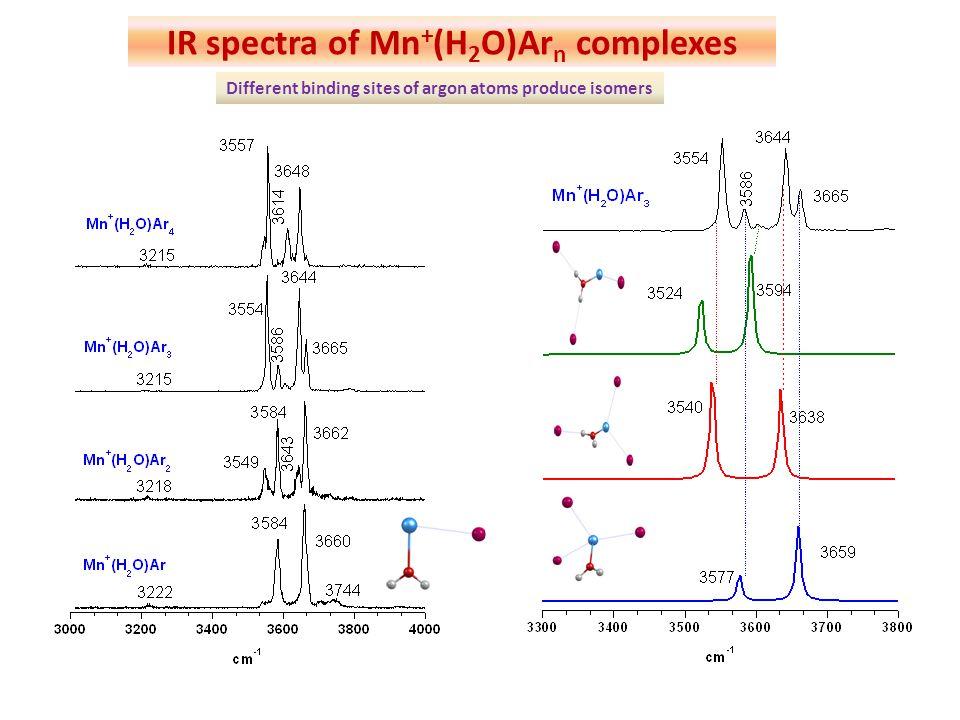 IR spectra of Mn+(H2O)Arn complexes