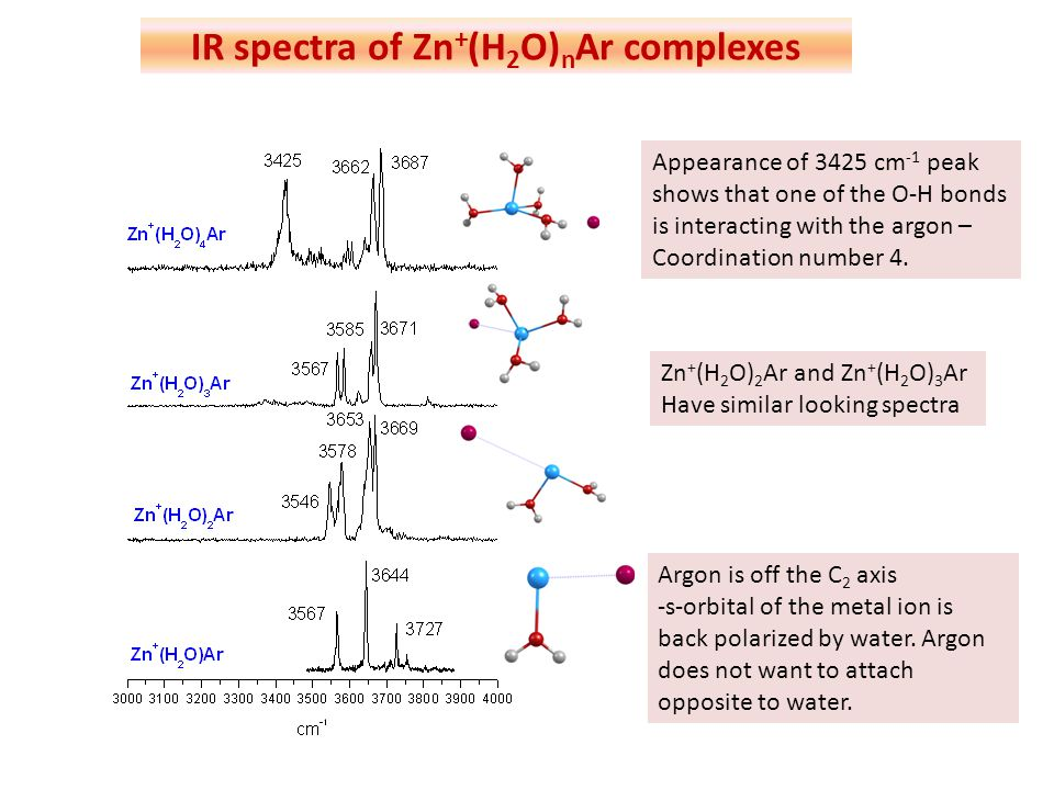 IR spectra of Zn+(H2O)nAr complexes