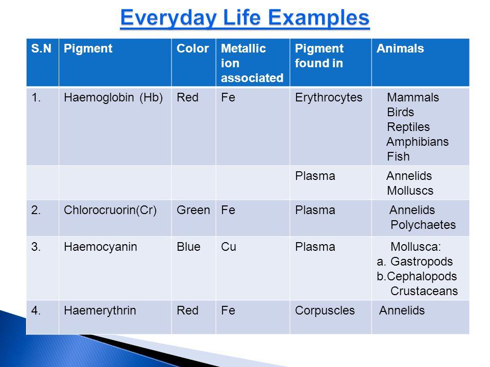 Everyday Life Examples