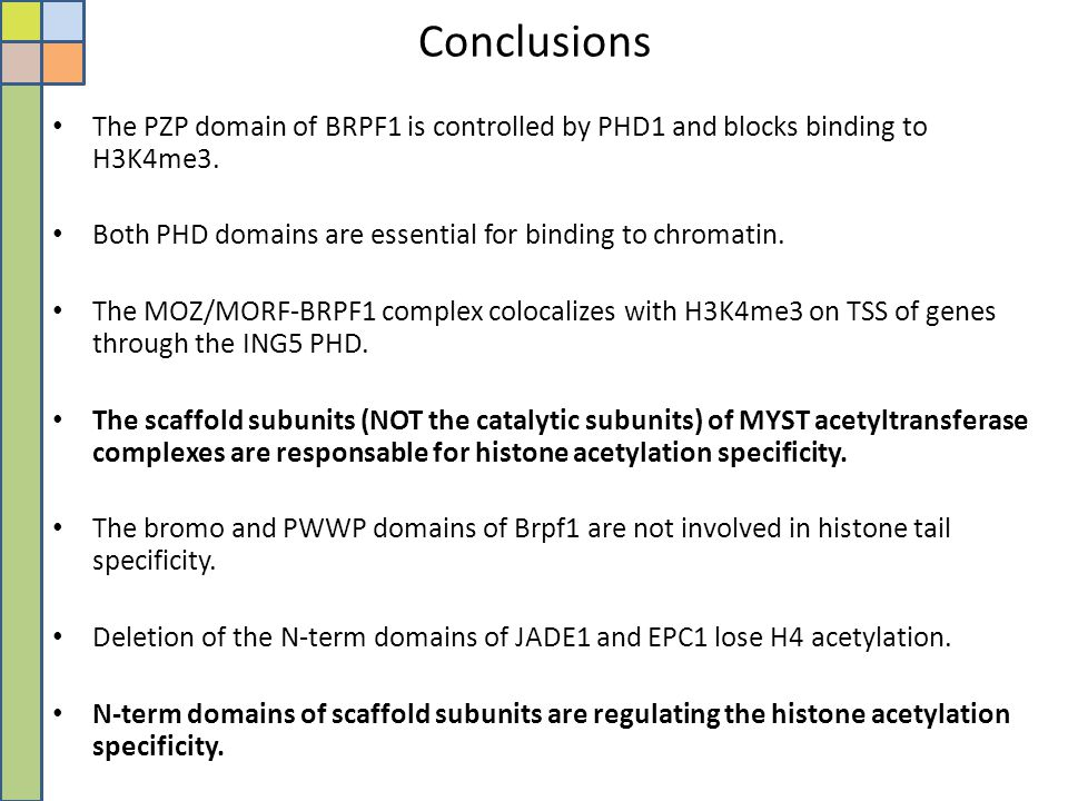 Conclusions The PZP domain of BRPF1 is controlled by PHD1 and blocks binding to H3K4me3. Both PHD domains are essential for binding to chromatin.