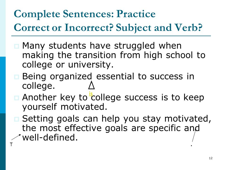 Complete Sentences: Practice Correct or Incorrect Subject and Verb