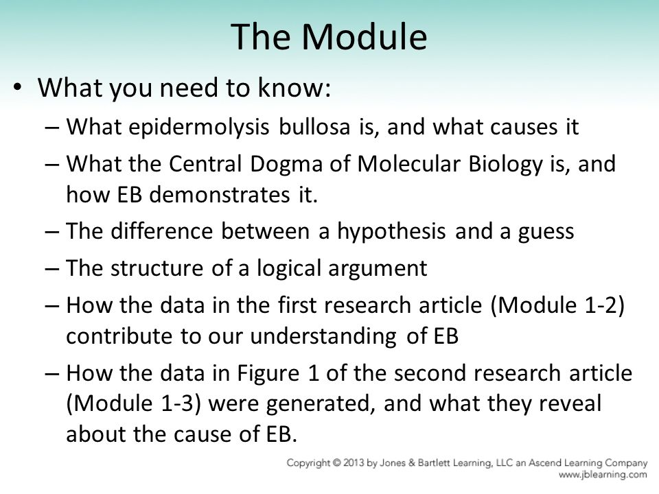 The Module What you need to know: