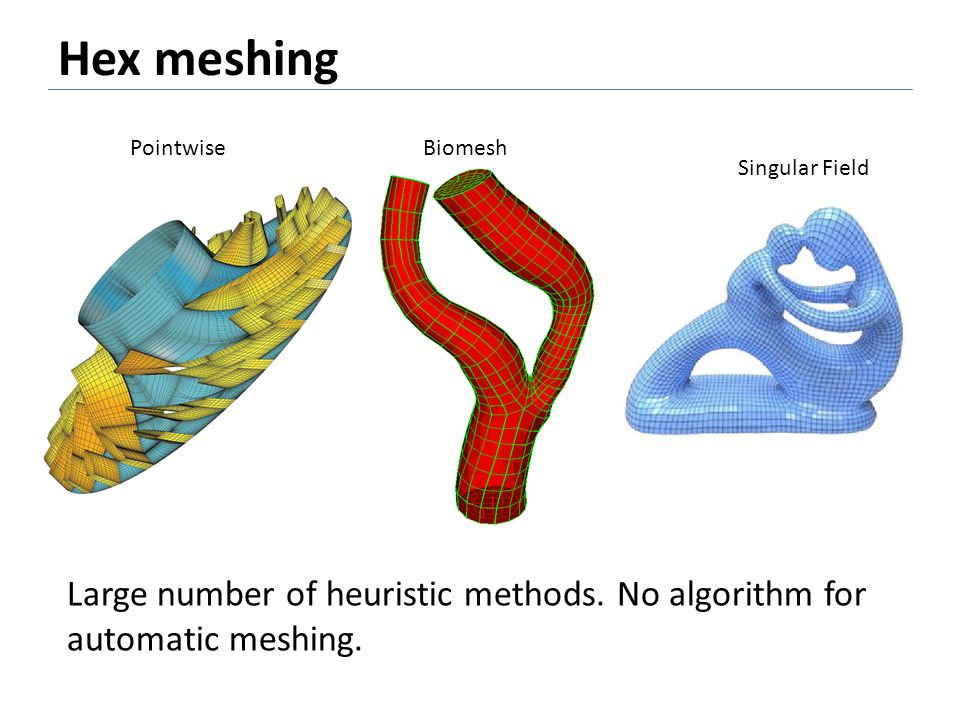 Hex meshing Pointwise. Biomesh. Singular Field.
