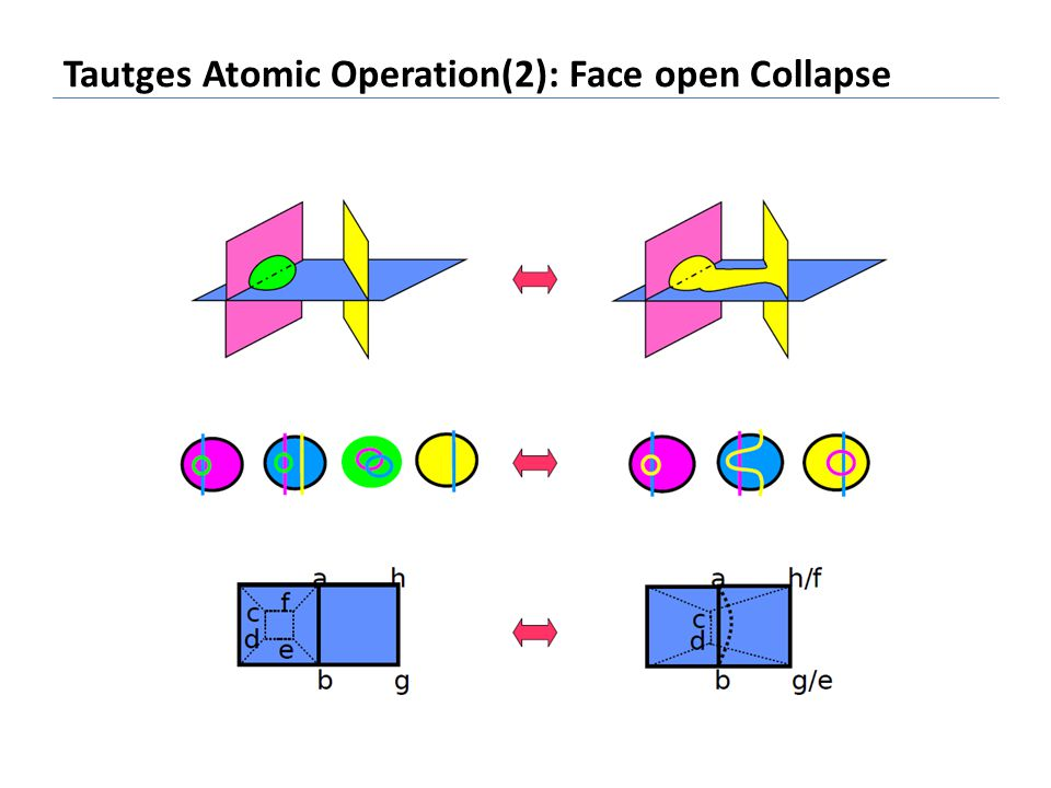 Tautges Atomic Operation(2): Face open Collapse