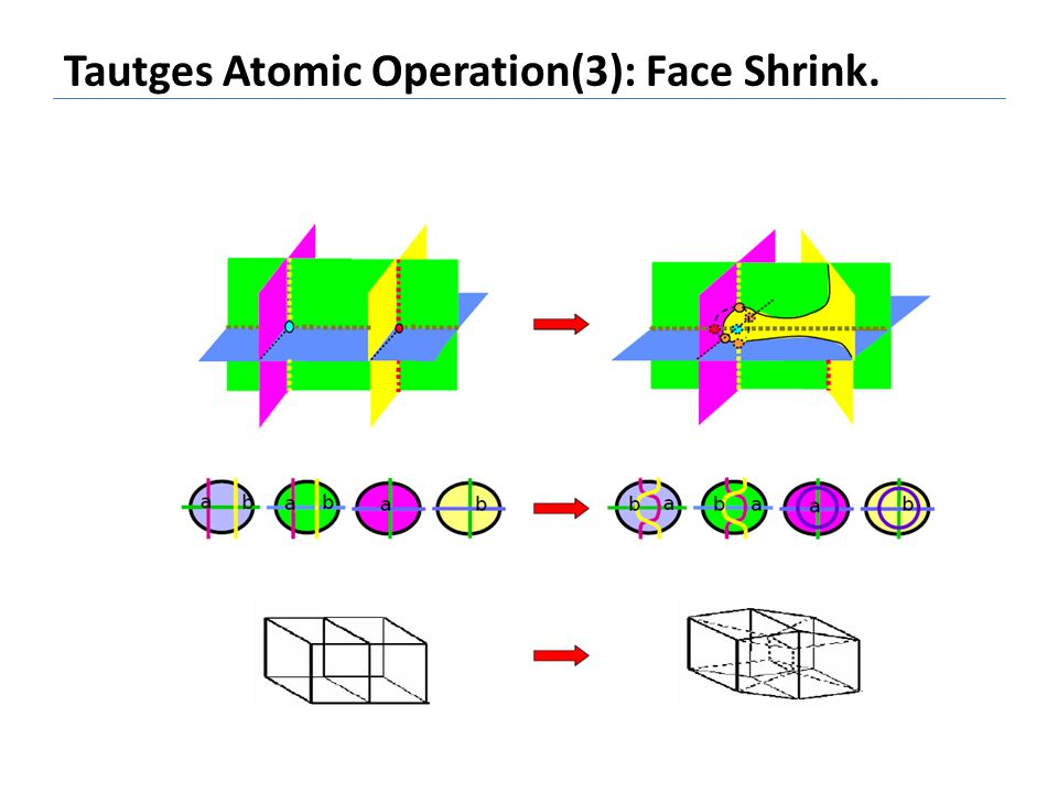 Tautges Atomic Operation(3): Face Shrink.