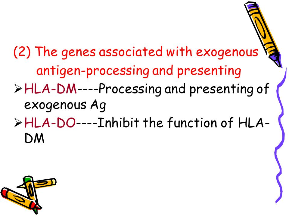 (2) The genes associated with exogenous