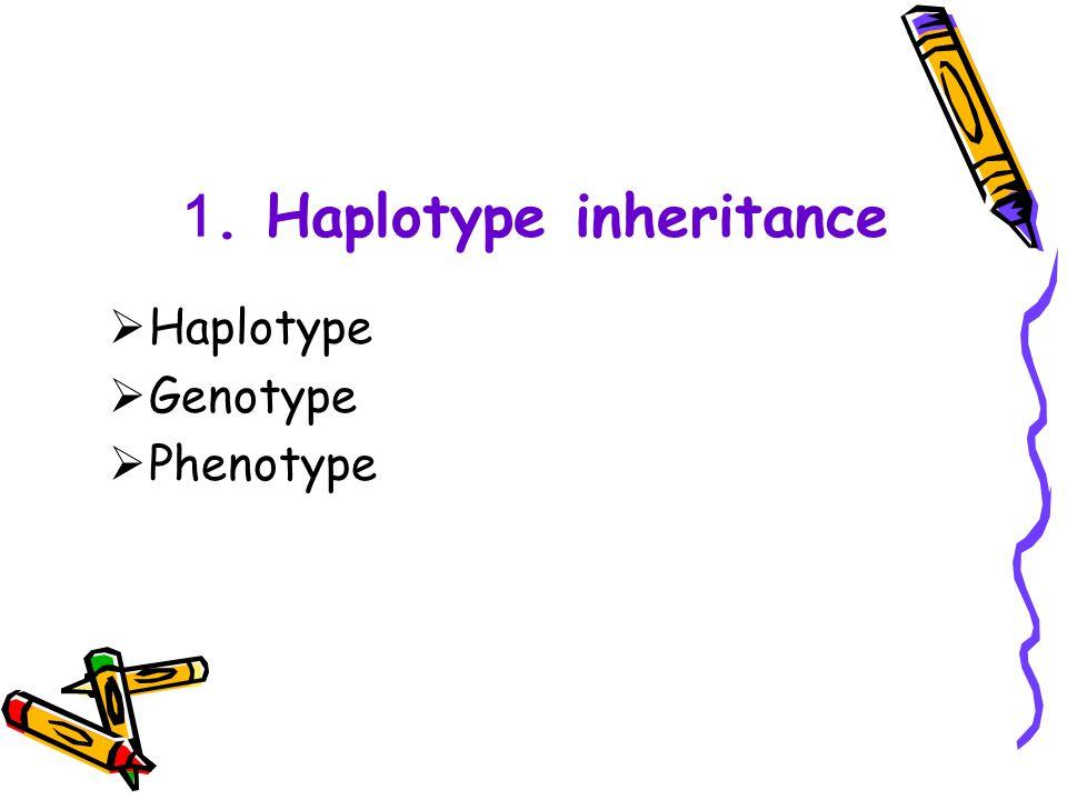 1. Haplotype inheritance