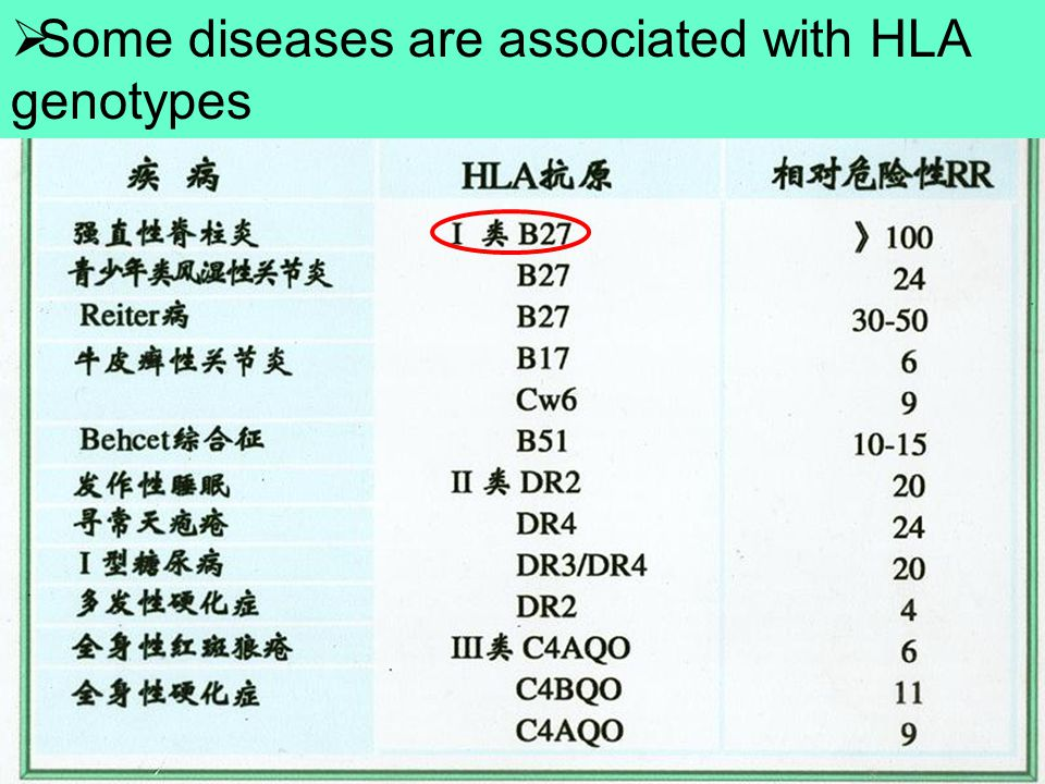 Some diseases are associated with HLA genotypes